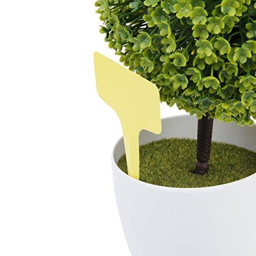 Générique Marqueurs Etiquettes Plante de Pépinière Arbustes Semis Bouture Type T Jardin Kit ...