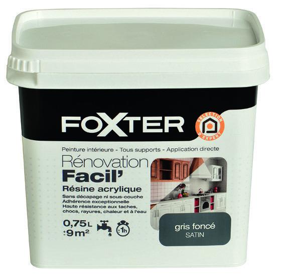 3601029894570 Foxter Peinture De Renovation